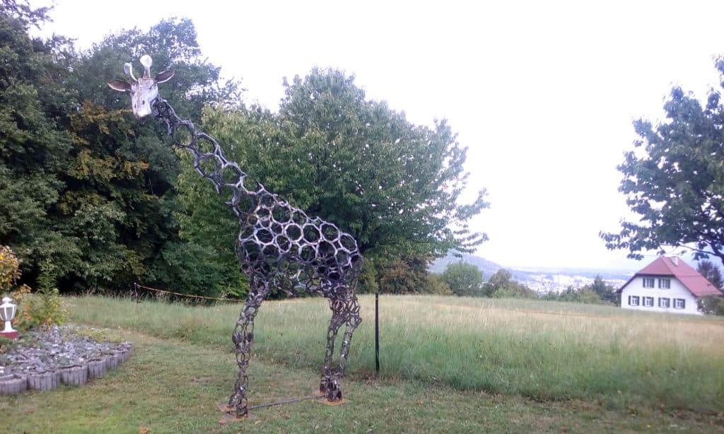 Girafe perdue en Valais